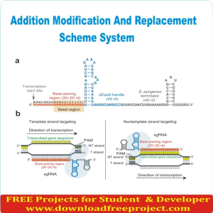 Addition Modification And Replacement Scheme System